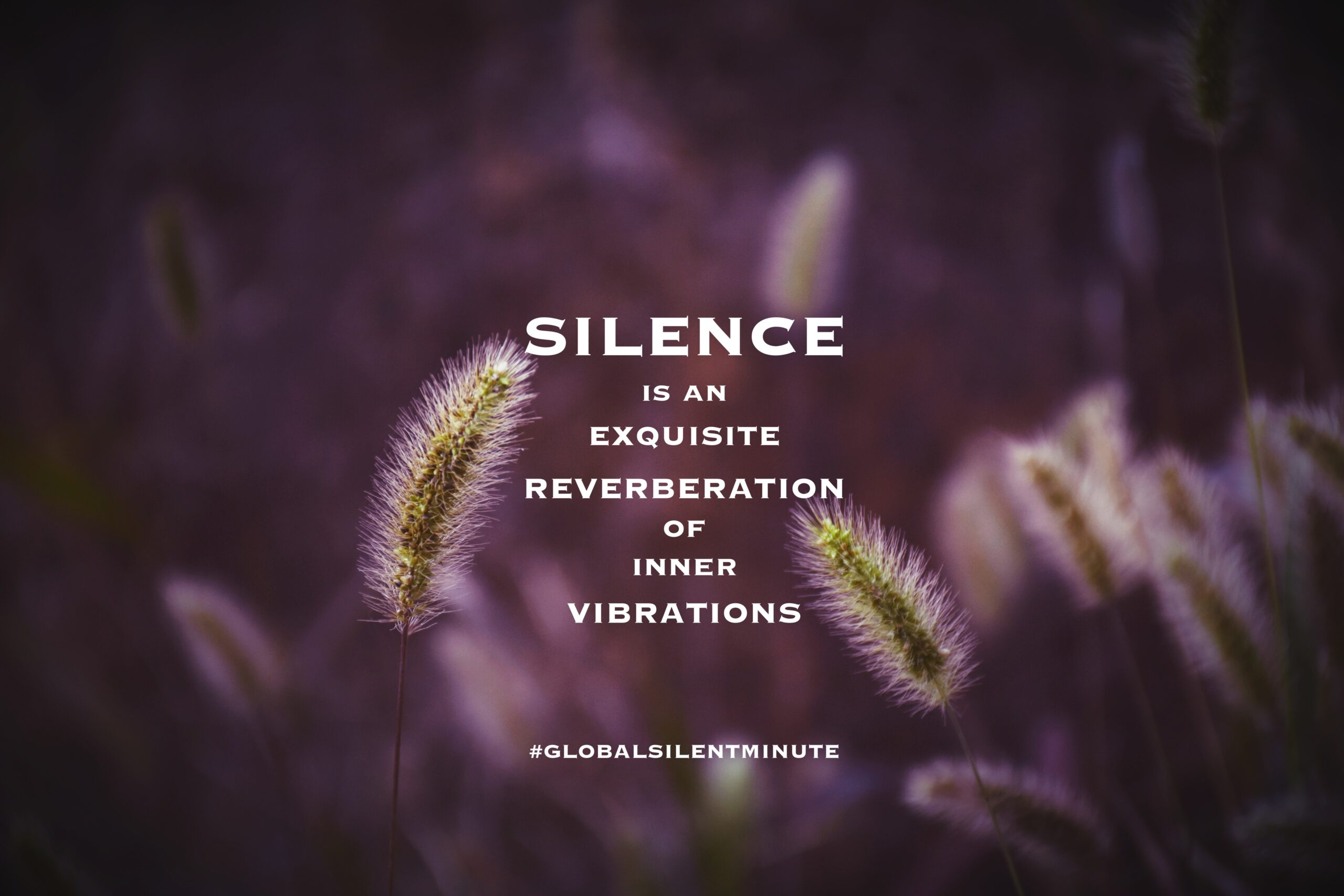 15.Silence is an exquisite reverberation of inner vibrations
