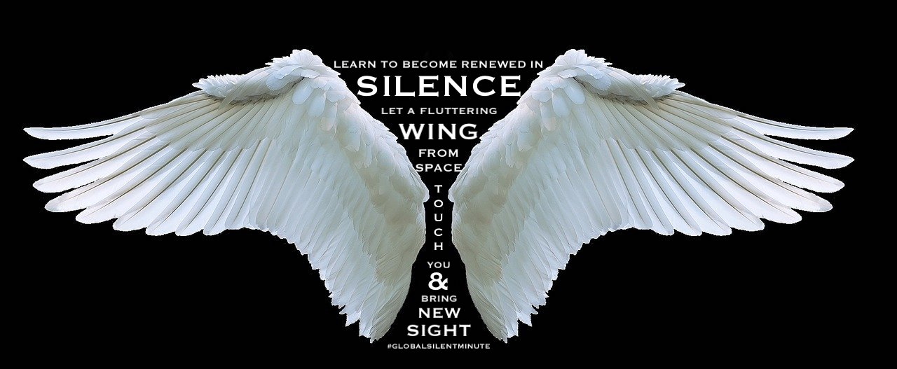 17. Learn to become renewed in Silence. Let a fluttering wing touch you